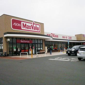 マックスバリュ 新戸島店